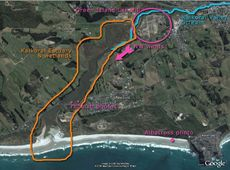Kaikorai Estuary clean up site (Black Head) - © Nic Reeves - phoam.co.nz
