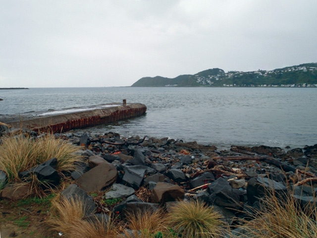 Lyall-bay-stormwater-pipe2